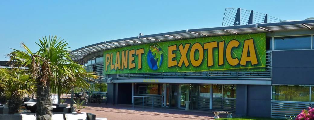 Tickets : PLANET EXOTICA 2021 - Billetweb