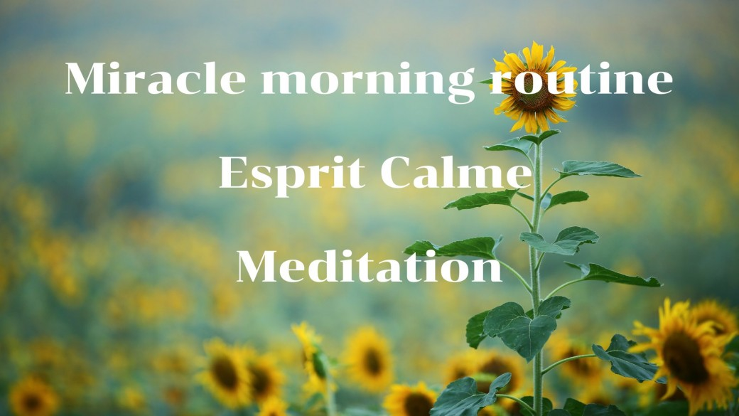 Miracle morning routine. Meditation