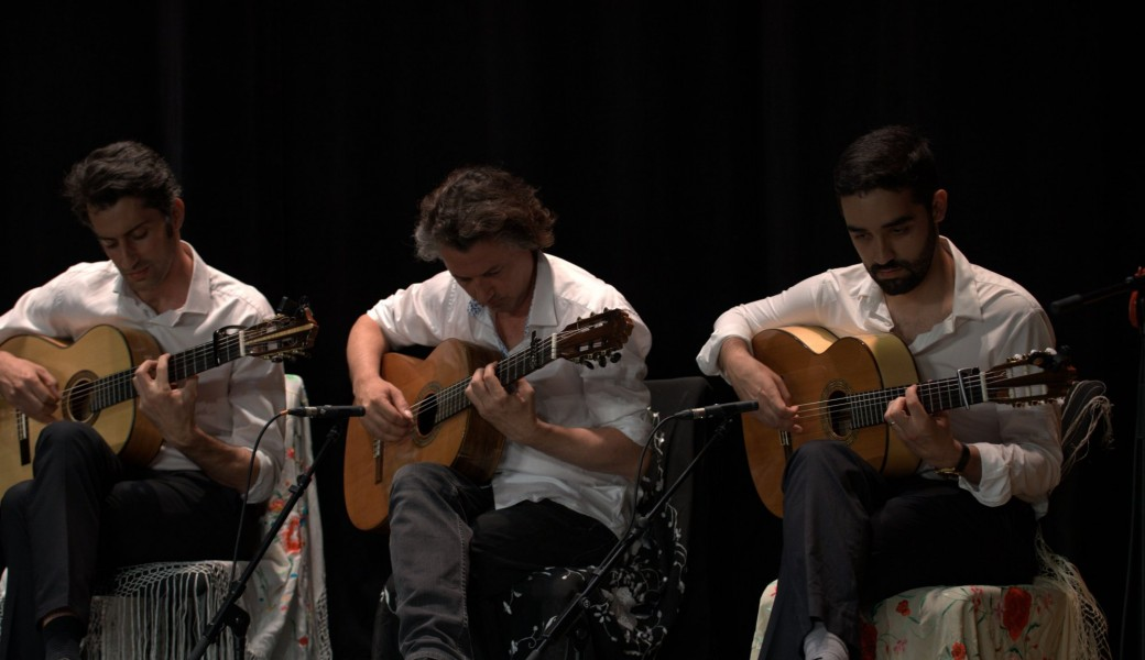 Stage intensif guitare flamenco Août 2019